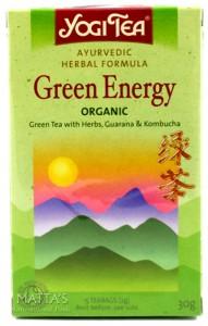 yogi-green-energy.jpg